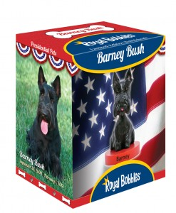 Barney Bush_Box_Comp RO