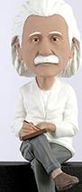 Einstein Computer Sitter